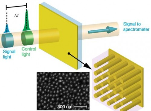 Controlling optical response with designed electron temperature distributions in plasmonic nanostructures.